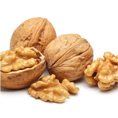 Kernal Wallnuts